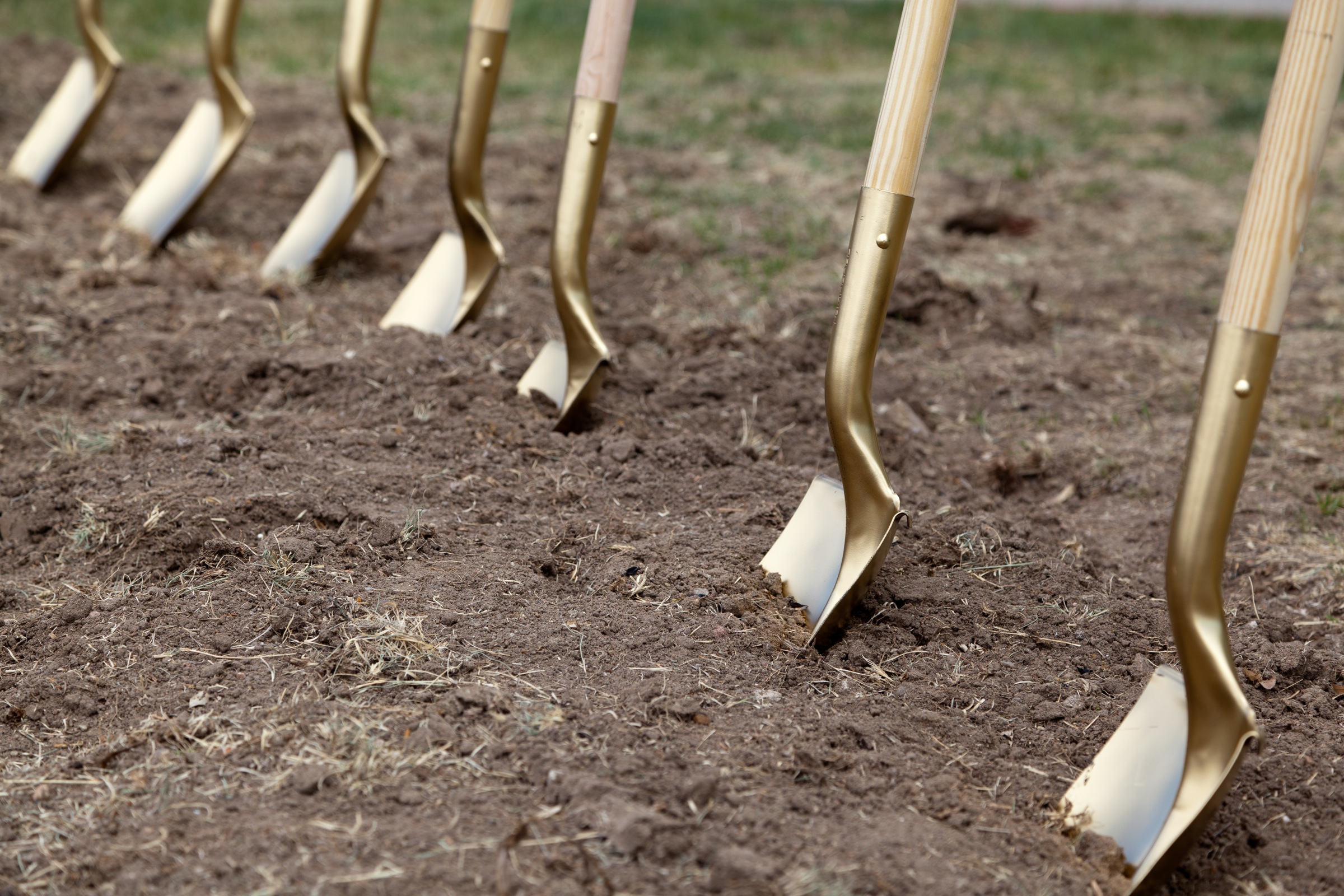 shovels in dirt
